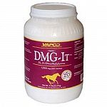 In order to increase your horse's metabolism, use DMG-It supplement by Vapco. Helps to regulate the glucose level in your horse's blood to increase the level of energy with the ingredient DMG. Great for performance horses!