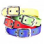 Hamilton's Deluxe DOUBLE THICK dog collar is made from double thick premium nylon and the finest and strongest hardware available. New! Mango, Lemon, Lime & Berry Colors