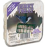 Your backyard birds will enjoy this berry suet treat, which is sure to make your backyard buffet irresistible to various birds. Easy to install in feeder. Just place the suet treat in a suet basket and hang. Perfect for year round feeding.