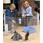 Our Small Animal Play Pen is made for ferrets, rabbits and most small animals. This indoor/outdoor expandable play pen provides a safe, contained area for your pet to play and exercise. Easy assembly.