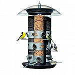 Treat birds to a hanging buffet with the dynamic Triple Tube Bird Feeder from Perky Pet. Three separate feeding tubes, a total capacity of over 7 quarts, use up to three different types of seed. Capacity: 7.34 quarts