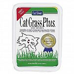 Bring the great outdoors inside for cats! CatGrass Plus satisfies a cat's urge to eat fresh vegetation and preserves precious houseplants. The unique formula requires watering only once, and grows straight from the container.