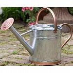This sturdy watering can is a garden essential for any home owner. It is made from galvanized steel that is heavy duty and can hold up to 1.9 gallons of water. Comes with a screw-on rose that gently showers your delicate plants and flowers.
