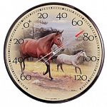 12 inch thermometer for outdoor use. By Joe Hautman - high end design and Chaney Instrument quality. Features a pair of highly detailed, beautiful horses running across a meadow.