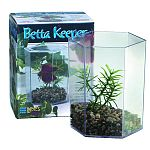 Use Lee's BettaHex to house and display the Betta Splendens, also known as the Siamese Fighting Fish. Nest multiple units to create eye-catching, in-store displays.