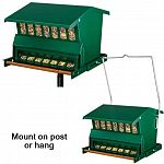 Counter balanced squirrel-proof feed access closer is easily adjusted to allow feeding of preferred birds. Weight of the squirrel or unwanted birds automatically closes access to feed tray.