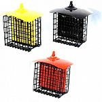 These bright colored metal suet cages are a fun way to feed the birds. Ready to hang. Easy to fill and clean. Holds 2 suet cakes.