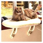 Give your cat a great outdoor view without scratching your furniture with this comfortable window seat by K and H. Choose heated or unheated. The heated seat uses a small amount of electricity to keep you cat warm and comfortable.