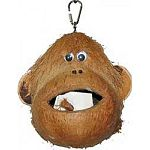 Cuttlebone and wood blocks to chew Use as a foraging toy by putting treats inside Hangs with metal chain and pear