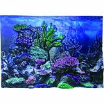 3 dimensional coral, rocks, plants, flowers and weeds give aquariums a true under water feel Illuminates under lights Durable, coated plastic makes backround easy to clean