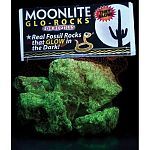 Real fossil rocks that glow in the dark. Ideal for reptiles- aquarium safe, too. Rough texture aids in shedding. Non-toxic coating.