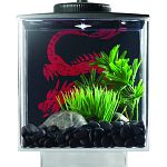Easy set up 6 w x 7 h x 6 d acryclic cube. Built in ventilation and feeding holes. Stylish elevated base. Display anywhere. Battery powered led light. Customize your background. Add your own photo. For one betta. Decor, background, batteries and fish not