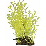 Glow elements plants were designed to make your aquarium look stunning and keep your fish happy and healthy Features neon colors that are vibrant during the day under white lights and glow at night under blue lights Creates a luminescent underwater world