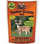 Comprised of hearty perennials that can last for 6 or more years. Includes four different varieties of clover and one variety of chicory. Provides up to 10 tons of 30 percent forage per acre per year. Great food plot for deer and turkeys. Treated with ant