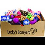 Huge assortment of quality, value-priced dog toys in a free display box Save money and keep your dog happy Recession-busting value and variety