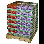 Contains 216 each of birds blend and berry blast suet and 144 each of orange burst and peanut crunch suet
