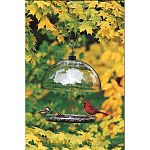 Versatile clear view platform bird feeder featuring a 15 inch diameter adjustable dome- which protects seed from weather and keeps out large birds. UV stabilized polycarbonate - won't yellow with age, dependably durable. 13 inch diameter
