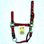 Nylon Adjustable Horse Halter with Chin Strap - 1 inch by Hamilton. Adjustable chin snap at throat. Only the highest quality durable nylon webbing, thread and hardware is used to produce the Hamilton product line. Available in a wide variety of colors.