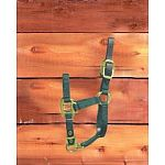 For foals. 3/4 inch deluxe nylon halter with leather headpoll breakaway. A foal is an equine, particularly a horse, that is one year old or younger. Designed to grow with your foal. Hamilton quality.