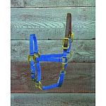 For ponies. 3/4 inch deluxe nylon halter with leather headpoll breakaway. A PONY is generally any horse under 14.2 hands high at the withers. Hamilton quality.