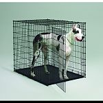 Home training crate for dogs. Recommended for xx-large dogs borzoi, great dane, great pyrenees, irish wolfhound. Pan no included.