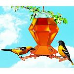 EXCLUSIVE perch-activated bee guard feeding stations featured on this oriole feeder allow orioles and hummingbirds to feed without bees.  Rugged 36-ounce plastic hexagonal bottle.  NO DRIP feeding base.