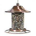 Perch design allows birds to feed from multiple angles. Patented sure-lock cap system helps keep squirrels out. Eye-catching copper finish. Innovative design.