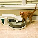 The only automatic cat litter system that cleans & removes waste continuously & automatically without disturbing your cat. Quiet and simple to use. Removes waste from the cat litter box to a built-in waste container via a quiet, slow-moving conveyor syste