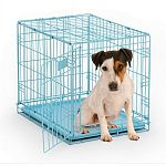 Durable powder coated finish. Safe and secure slide-bolt latch. Tough, easy-to-clean plastic pan. Easily sets up and folds down to portable size- no tools required. Includes divider panel that allows you to adjust the length of living area as your puppy g