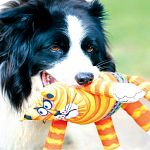 Durable, high quality dog toy Squeaker toy Designed for maximum floppability