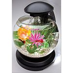 Crystal clear glass aquarium with unique waterfall feature. Tetra pump driven filter with cartridge. Bright white led lights. Stylish black base with light arm. Single power cord operates both the light and the filter.