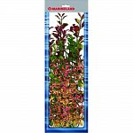 Pack contains 4 silk plants: 6 in and 9 in rotala, 12 in moneywort, and 18 in ludwigia Provides cover for the fish and reduces fish stress Easy to install and clean