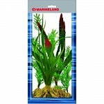 Pack contains 4 silk plants: dragon flame, octopus plant, and 2 sizes of stragrass Provides cover for the fish and reduces fish stress Easy to install and clean