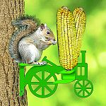 If you can't beat 'em - join 'em. Squirrels attacking your bird feeders? Get them their very own feeder. They will love the corn on the cob that can be inserted in this feeder.