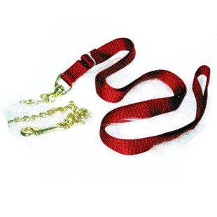 Nylon Lead with Chain and Snap - Red / 7 ft.