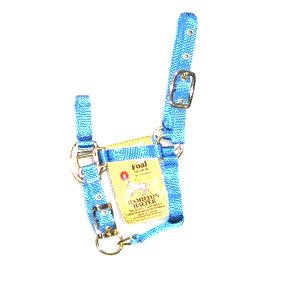 Foal Halter with Adj. Chin - Berry