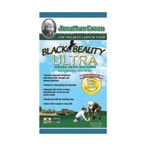 Black Beauty Ultra Grass Seed