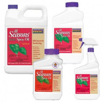 All Seasons Horticultural Spray Oil