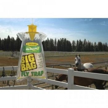 Big Fly Trap  (Case of 12)