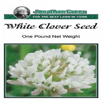 White Clover Seed - 1 lb.