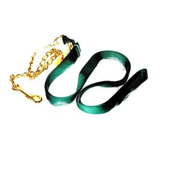 Nylon Lead with Chain and Snap - 7 Ft / Green