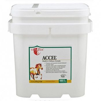 Accel Daily Equine Supplement - 30 lbs.