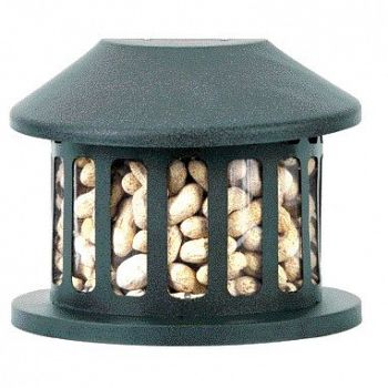 Squirrel Diner II Feeder - Medium