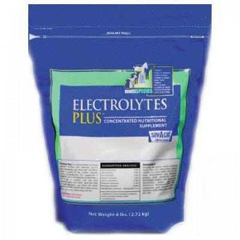 Electrolytes Plus Bag Livestock Supplement