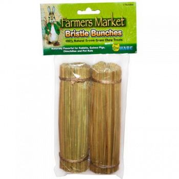 Bristle Bunches for Small Pets