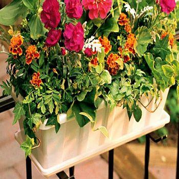 Flower Box Planters