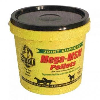Mega-MSM Pellets for Horses - 5 lbs