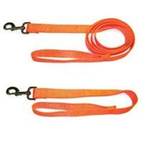 Safety Orange Dog Leash