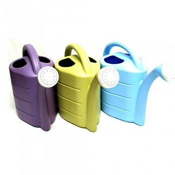 Pretty Watering Can - 2 gallon
