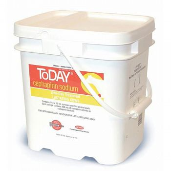 Today Pail for Livestock - 144 ct.